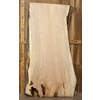 Spalted Maple Slb 2.87x37.5x85